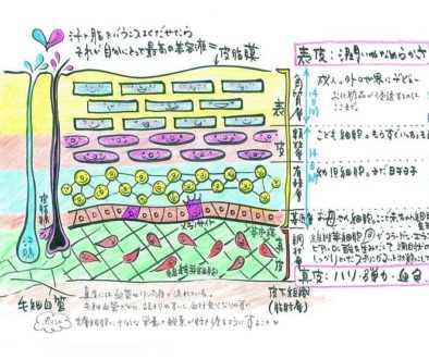 b2aad5da-8bdc-4a43-a06a-2da5c344a841.jpg